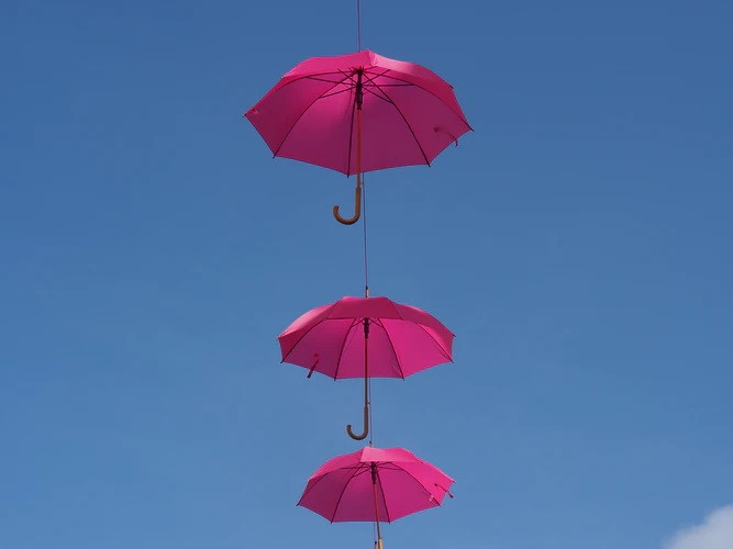 Pros and cons of working with an umbrella company